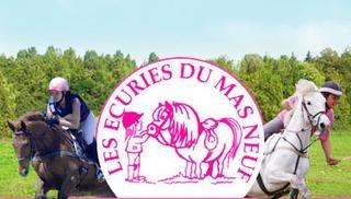 Ecuries du Mas Neuf - Salon-de-Provence