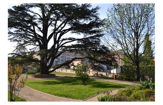 Square François Blanc 1 - Salon-de-Provence